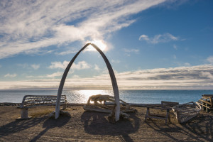 Bowhead whale jaw bone arch with wooden Umiak frames (whale hunting boats) Barrow, Alaska.